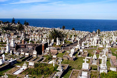 Waverley Cemetery  photo