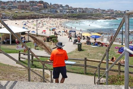 Waverley Council staff at Bronte Beach