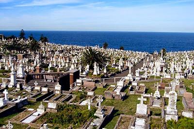 Waverley Cemeteries photo