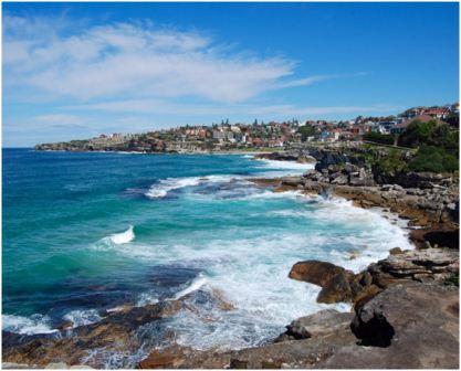 Marine environment - Waverley Council