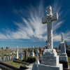 Waverley Cemetery Tour - Suspended until further notice thumbnail